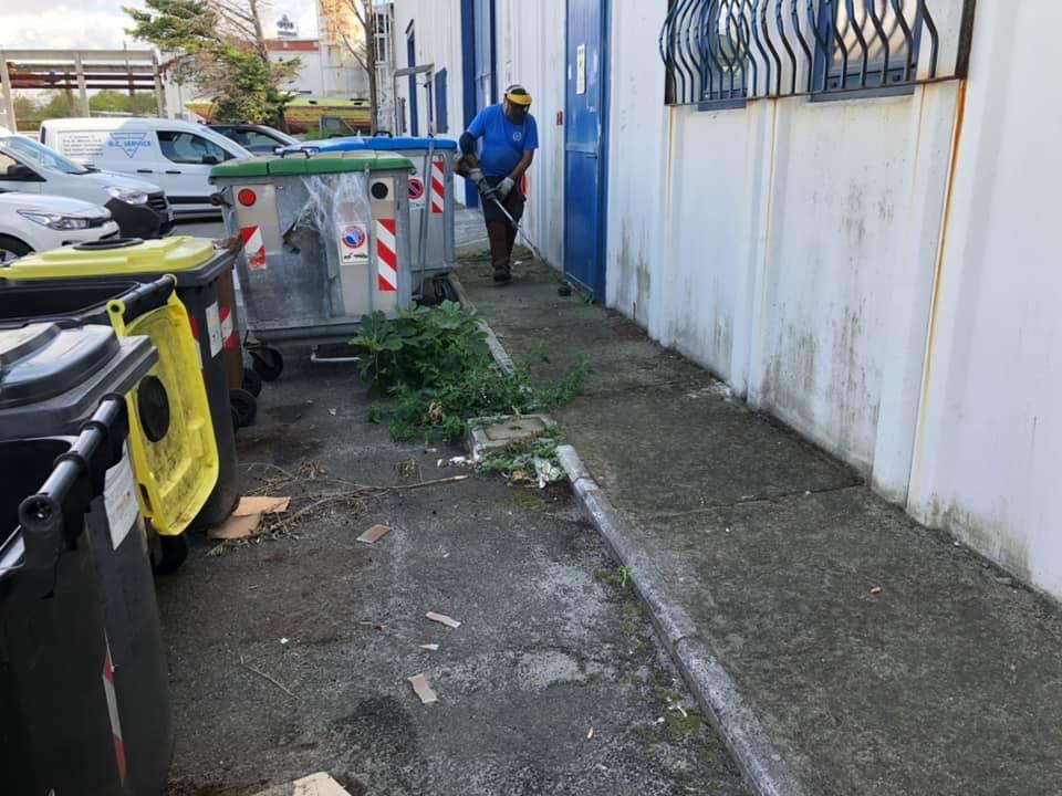 giardinaggio impresa pulizie livorno